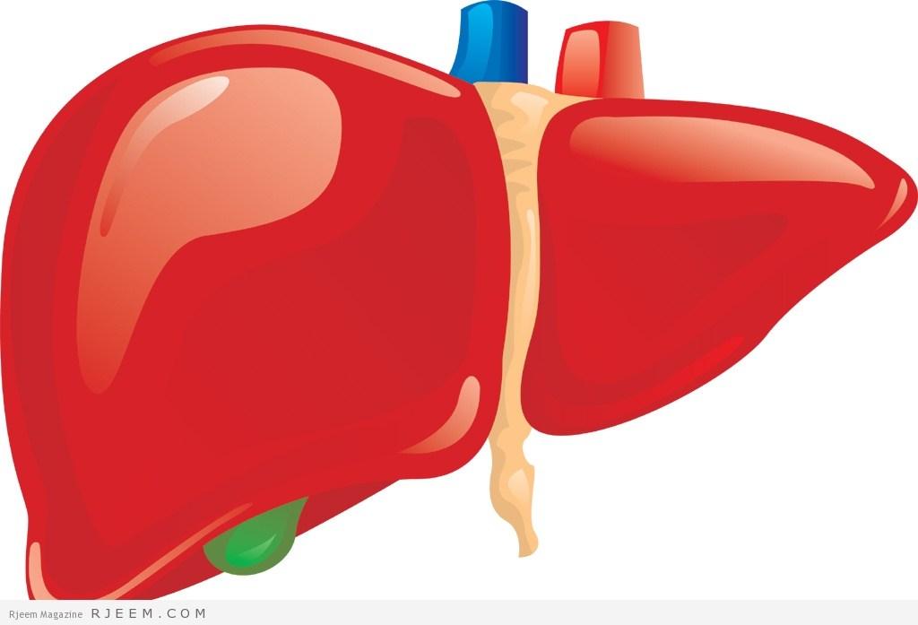 مقتطفات طبية في الأمراض الكبدية من دكتور السيد إمام