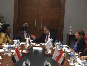 وزير الصحة يعقد لقاءات مع ممثلي الدول الافريقيةوزير الصحة يعقد لقاءات مع ممثلي الدول الافريقية
