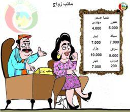 كاريكاتير المواطنة نيوز 20132