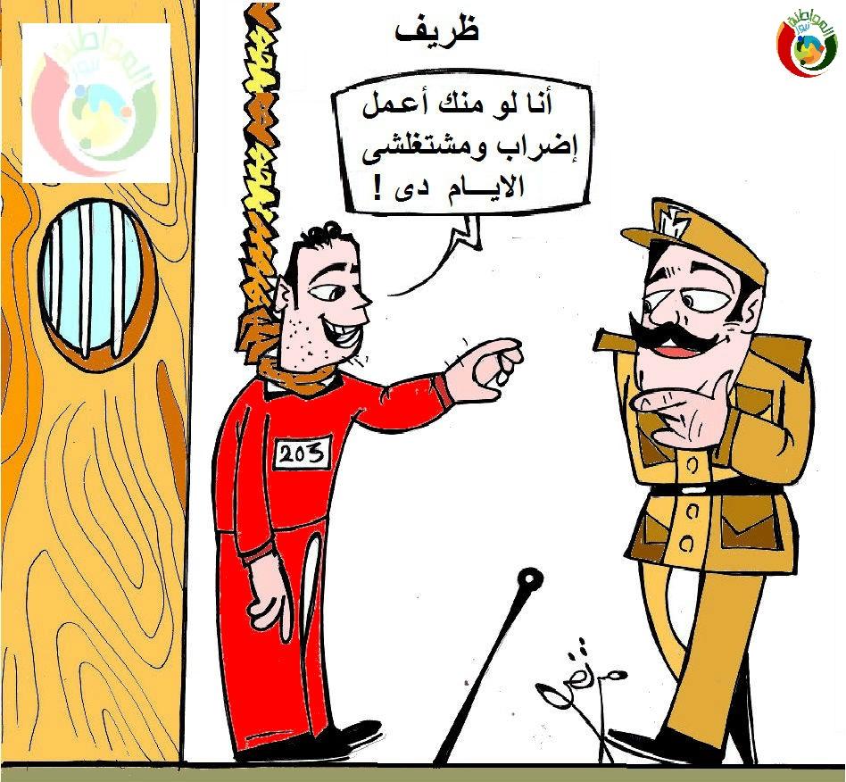 كاريكاتير المواطنة نيوز 232