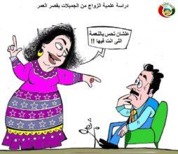 كاريكاتير المواطنة 2315