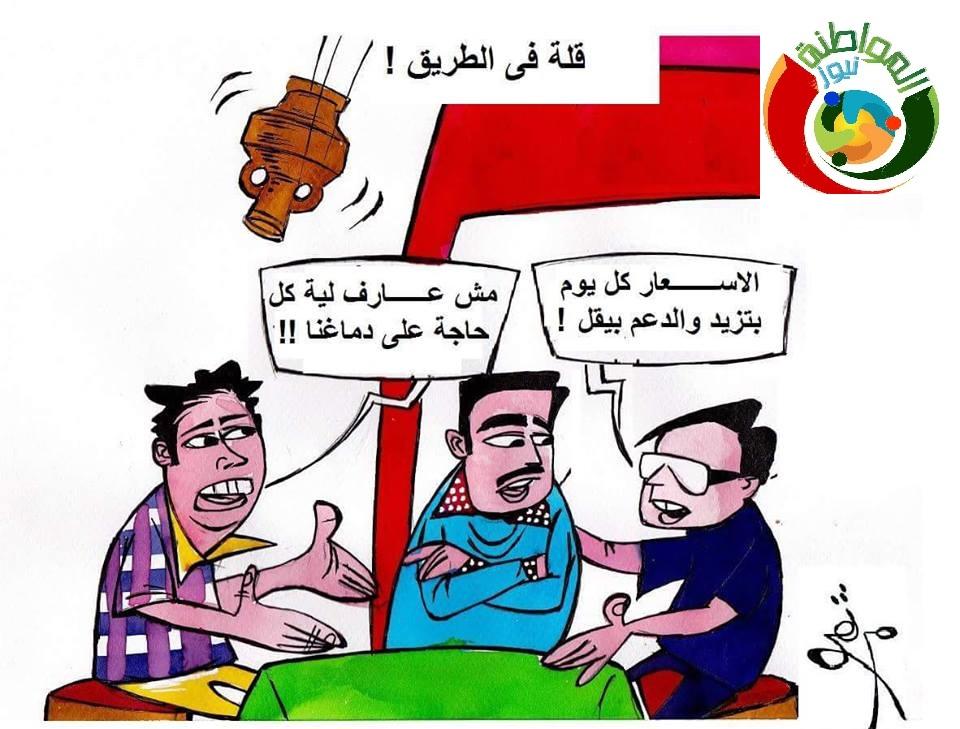 كاريكاتير المواطنة نيوز 31