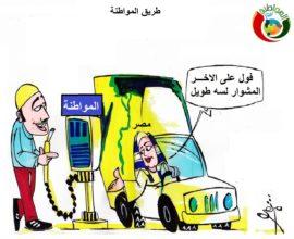 مواطنة نيوز كاريكاتير
