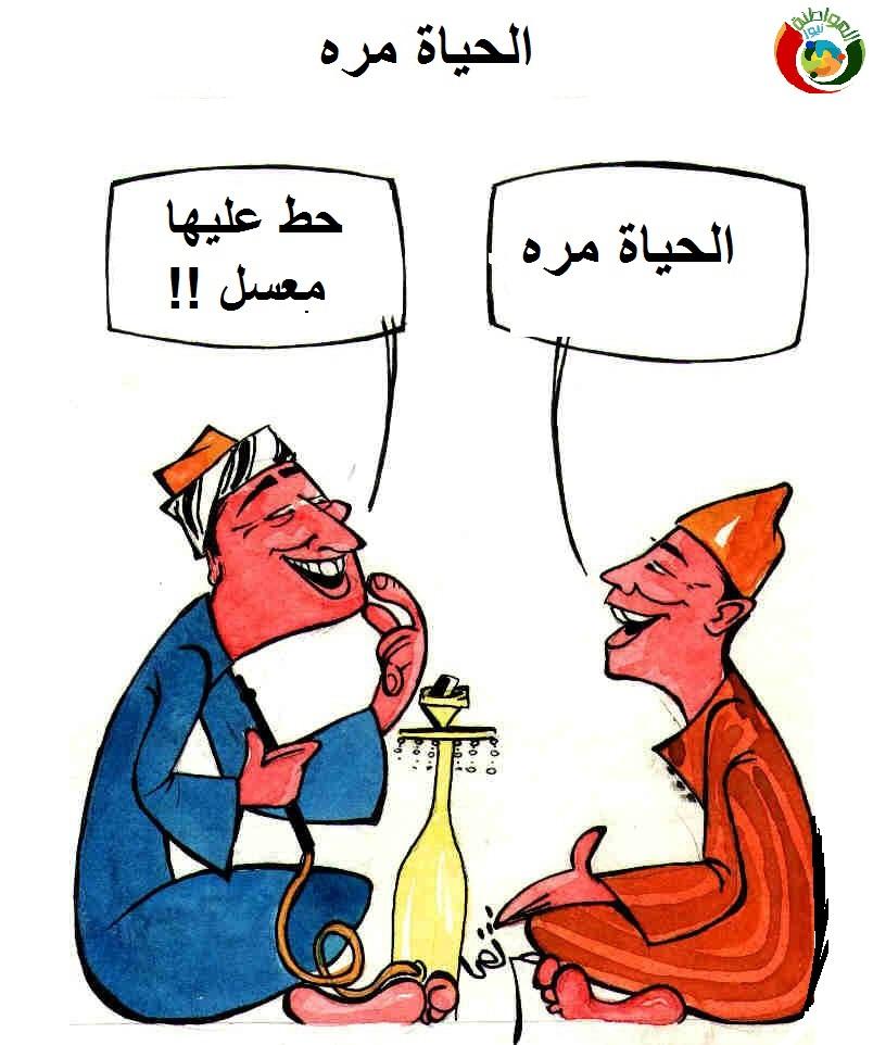 كاريكاتير المواطنة نيوز 56