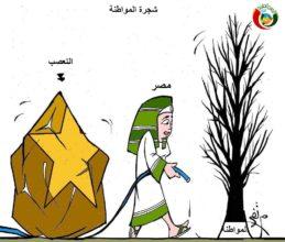 كاريكاتير المواطن نيوز 452