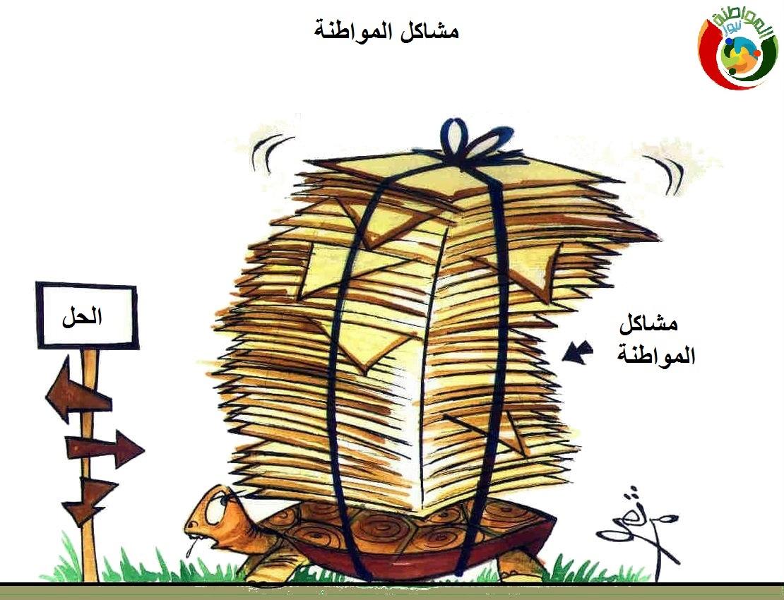 كاااريكاتير المواطنة نيوز